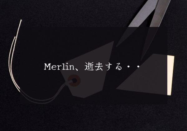 仮想通貨Merlin 大暴落