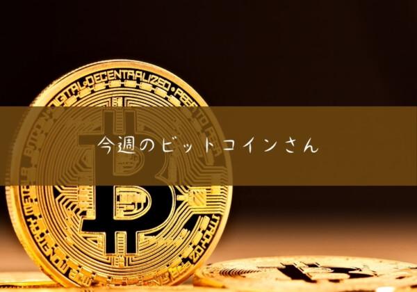 今週のビットコイン