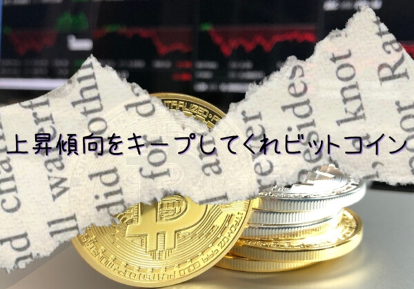 ビットコインの価格上昇